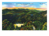 Great Smoky Mts. Nat'l Park, Tn - Scenic View of Clingman's Dome, Highest Peak in Park, c.1944 Posters