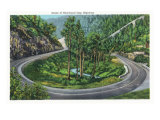 Great Smoky Mts. Nat'l Park, Tn - Scenic View of the Newfound Gap Highway, c.1940 Prints