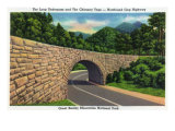 Great Smoky Mts. Nat'l Park, Tn - Newfound Gap Hwy View of the Loop Underpass, c.1946 Prints