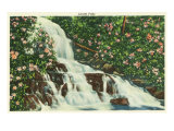 Great Smoky Mts. Nat'l Park, Tn - View of Laurel Falls, c.1946 Posters