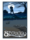 Sequoia Nat'l Park - Bigfoot - Lp Poster, c.2009 Posters by  Lantern Press