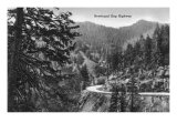 Great Smoky Mts. Nat'l Park, Tn - Newfound Gap Highway Scene (B/W), c.1940 Prints