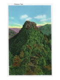 Great Smoky Mts. Nat'l Park, Tn - Close-Up View of the Chimney Tops, c.1940 Posters