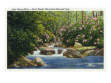 Great Smoky Mts. Nat&#39;l Park, Tn - Scenic View of Little Pigeon River, c.1936 Prints