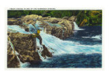 Great Smoky Mts. Nat'l Park, Tn - View of a Fisherman Trout Fishing, c.1946 Prints