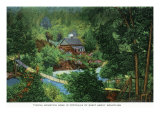 Norris, Tennessee - View of Mountain Home in the Foothills of Great Smoky Mountains, c.1944 Poster
