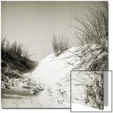 Baltrum Beach, no. 10 Poster av Katrin Adam