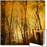 Tree Reflections Plakat av Irene Suchocki