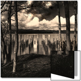 Pilings at the Riverbank Prints by Jody Miller