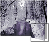 Snow Covered Trees along Creek in Winter Landscape Poster by Jan Lakey