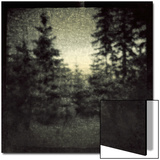 Blurred Forest Posters by Ewa Zauscinska