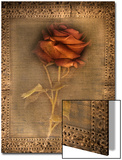 Rose on Fabric Posters by Robert Cattan