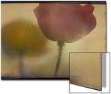 Close up of Flower Stem Plakater av Mia Friedrich
