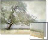 Tree in Field of Flowers Plakat av Mia Friedrich