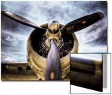 1945: einmotoriges Flugzeug Kunstdruck von Stephen Arens
