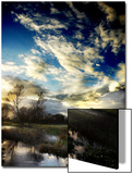 Water Meadow Posters by Tim Kahane