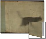 Blurred Cat Walking Plakater av Mia Friedrich