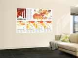 1980 Two Centuries of Conflict in the Middle East Map Wall Mural