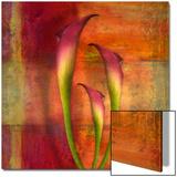 Three Pink Lilies Poster av Robert Cattan