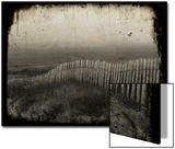 Dune Copie Poster von Nathalie Diacci