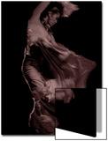 Flamenco Prints by Tim Kahane