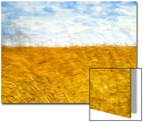 Golden Grass in the Wind Kunstdruck von Robert Cattan