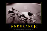 Endurance Prints