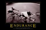 Endurance Prints