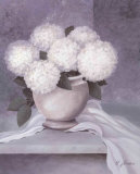 Tender Hydrangea I Prints by Horst Jonas
