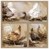 Poules Blanches et Coq Art by Pascal Cessou
