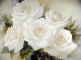 White Roses Prints by Igor Levashov