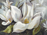 Tender Magnolias I Prints by Anna Field