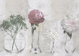 Soft Still Life Prints by Lucy Meadows