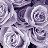 Tony Koukos - Bunch of Flowers III - Reprodüksiyon