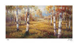 Forest Meadow Giclee Print by Stephen Douglas