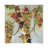 Vineyard Visions I Limitierte Auflage von Aleah Koury