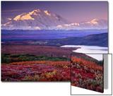 デナリー国立公園、ワンダー・レイクを望む, アラスカ州, アメリカ ポスター : チャールズ・スレイチャー