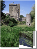 Blarney Castle, County Cork, Munster, Eire (Republic of Ireland) Art by J Lightfoot