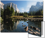 Talblick mit El Capitan, Cathedral Rock, Merced River in Yosemite National Park, Kalifornien, USA Poster von Dee Ann Pederson