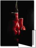 Hangende rode bokshandschoenen Posters van Ernie Friedlander