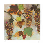 Vineyard Visions II Limitierte Auflage von Aleah Koury
