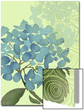 Hydrangea in Blue Prints
