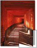 Fushimi-Inari Taisha Shrine, Japan Posters av Gary Conner