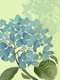 Hydrangea in Blue Poster