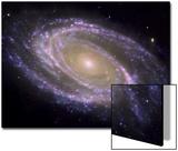 The Spiral Galaxy Known as Messier 81 Poster von  Stocktrek Images