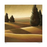 Golden Fields II Giclee Print by Deac Mong