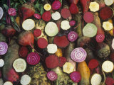 Variation in European Beets, Beta Vulgaris Photographic Print by David Cavagnaro