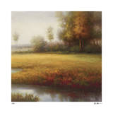 Meadow Light Giclee Print by Li Yong Nam