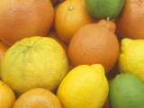 Citrus Fruits. Grapefruit, Tangerine, Ugli, Orange, Lemon, Lime, Tangelo and Clementine Photographic Print by Wally Eberhart