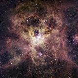 Ngc 2070, the Tarantula Nebula Photographic Print by Robert Gendler